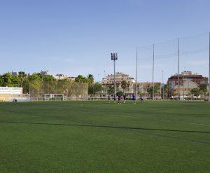 Campo7