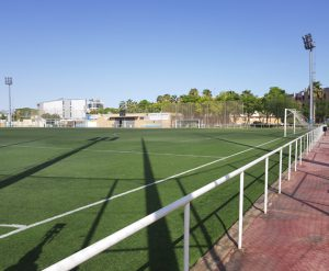 Campo6