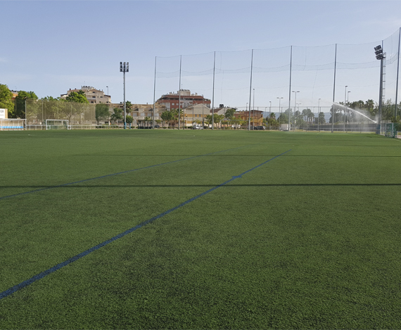 Campo3